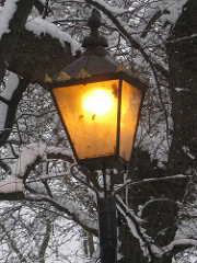 A warm lamp in the snow