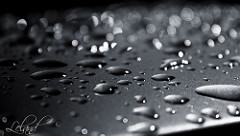 Raindrops on the roof of a car