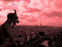 A Gargoyle looking over a pink city